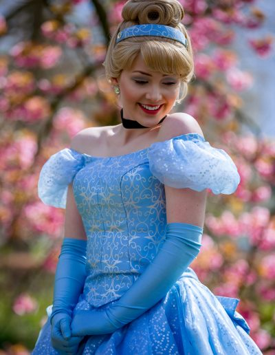 Prinses Assepoester
