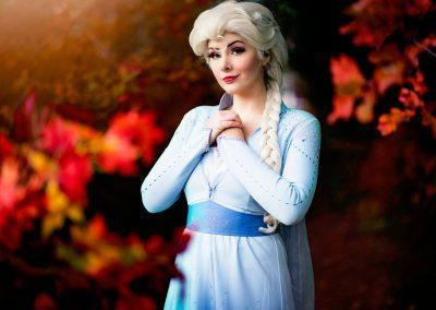Koningin Elsa Magical Party kinderfeestjes Anna prinses inhuren sneeuwzusjes prinsessenfeestje